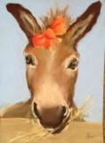 Strictly Donkey!