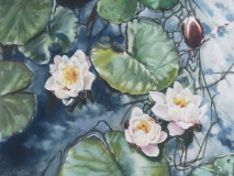 Waterlilies-and-Sky.-Pastel.-Linda-Alvis