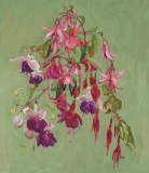 Floating-Fuchsias